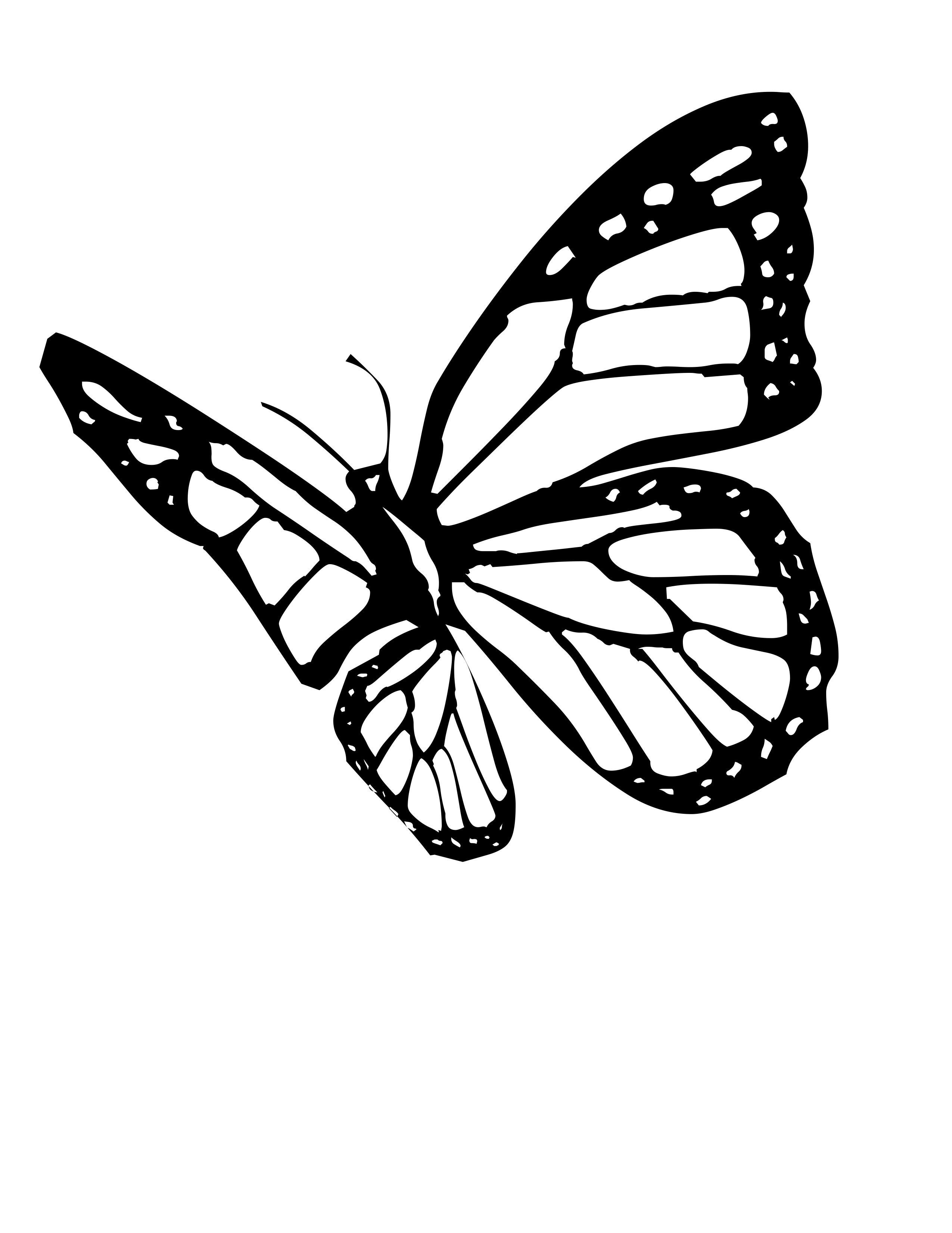 Monarch butterfly Coloring Pages Free  Gallery 1e - Save it to your computer