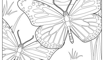 Monarch butterfly Coloring Pages - Monarch butterfly Coloring Page Tim S Printables