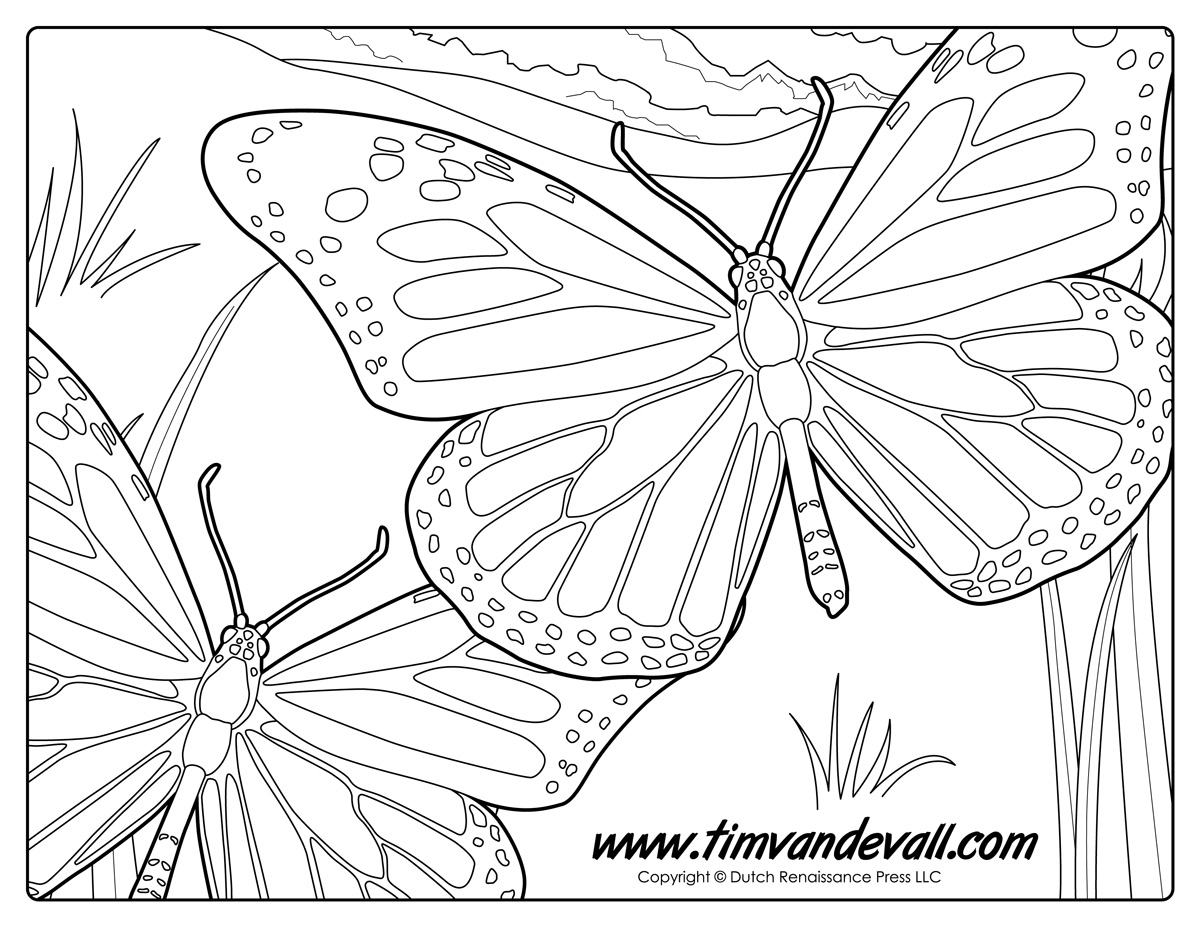 Monarch butterfly Coloring Pages  to Print 6l - Free For kids