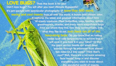 National Geographic Kids Coloring Pages - Ultimate Bugopedia the Most Plete Bug Reference Ever National