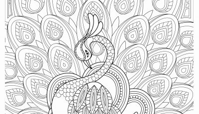Nature Mandala Coloring Pages - Free Printable Coloring Pages for Adults Best Awesome Coloring