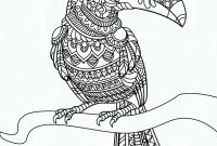 Parrot Coloring Pages - Free Coloring Pic Parrot Colouring Pages Fresh Coloring Printables