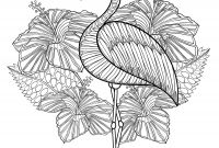 Pink Flamingo Coloring Pages - Cute Flamingo Coloring Page for Adults to Print at Home