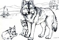 Printable Coloring Pages Of Wolves - 42 Fresh Stock Wolf Coloring Pages Printable – Free Coloring Sheets