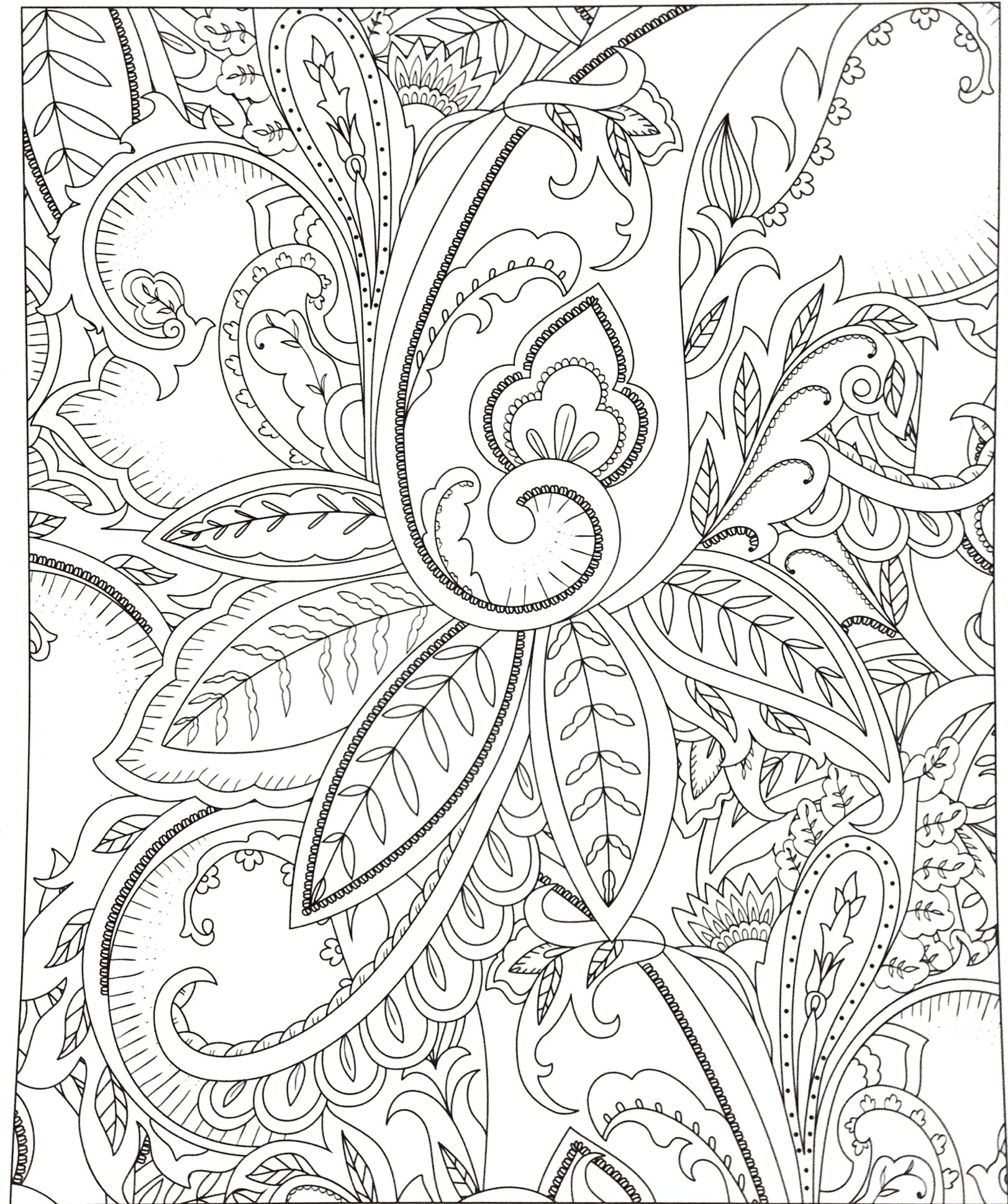 Printable Daisy Coloring Pages  to Print 19m - Free For Children