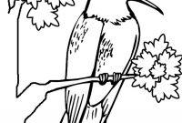 Printable Hummingbird Coloring Pages - Happy Hummingbird to Color Hummingbir Unknown