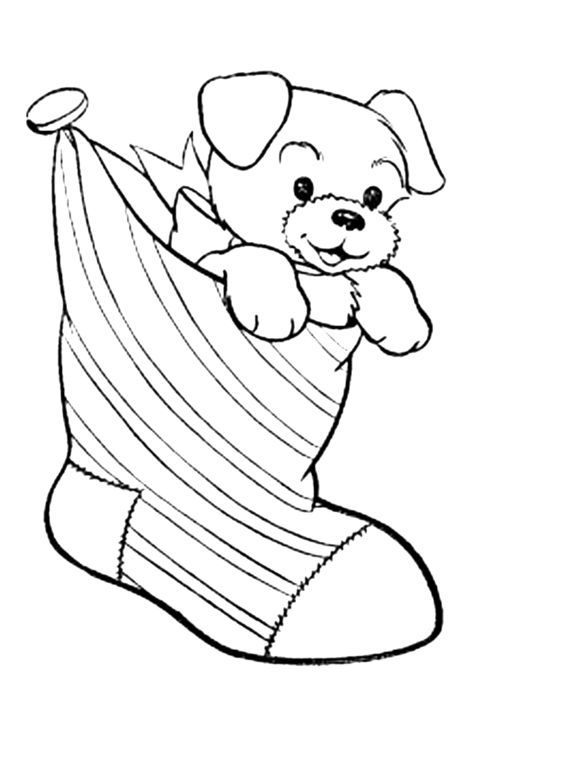 Puppy Coloring Pages  Gallery 19q - Free For kids