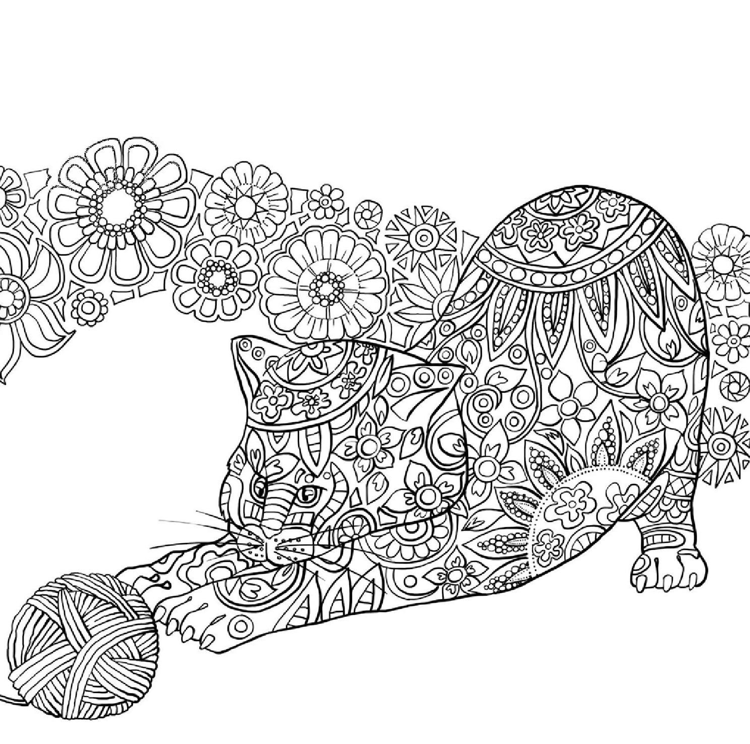 Realistic Cat Coloring Pages  Gallery 4g - Free Download