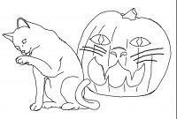 Realistic Cat Coloring Pages - Realistic Animal Coloring Pages Bubakids