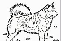 Realistic Coloring Pages - Free Husky Coloring Pages Husky Coloring Pages Wonderful Husky