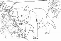 Realistic Fox Coloring Pages - Fox Coloring Pages to Print Inspirational Nightmare Foxy Coloring