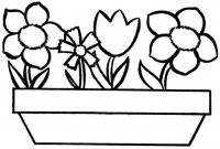 Sacagawea Coloring Pages - Free Printable Coloring Pages Flowers Best Image Coloring