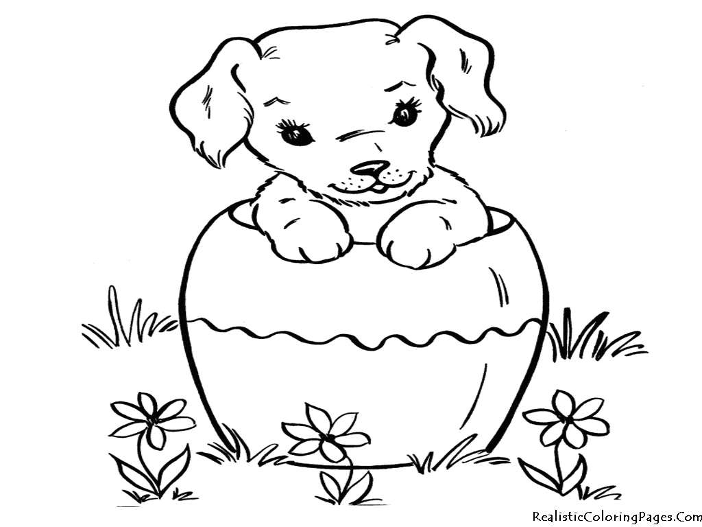 Spookley the Square Pumpkin Coloring Pages  Download 15t - To print for your project