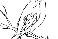 Swirly Coloring Pages - Florida Mockingbird Coloring Page