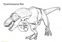 T Rex Coloring Pages - Florida Gator Coloring Pages Coloring Pages Coloring Pages