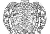 Turtle Coloring Pages - Alert Famous Turtleing Pages for Adults Author Promotion and