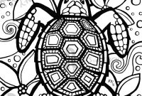 Turtle Coloring Pages - Pages Turtleml