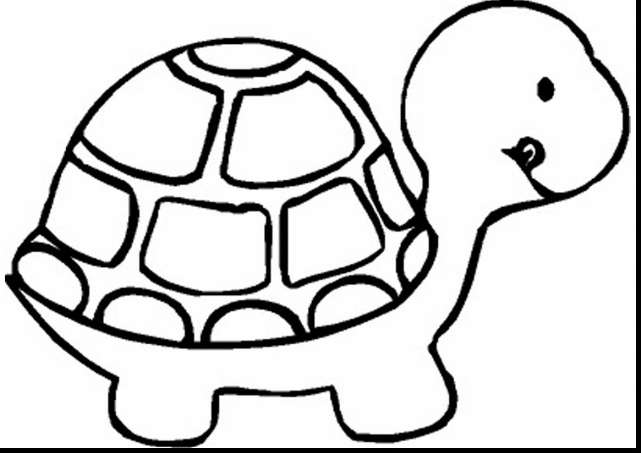 Turtle Coloring Pages  Download 8n - Save it to your computer