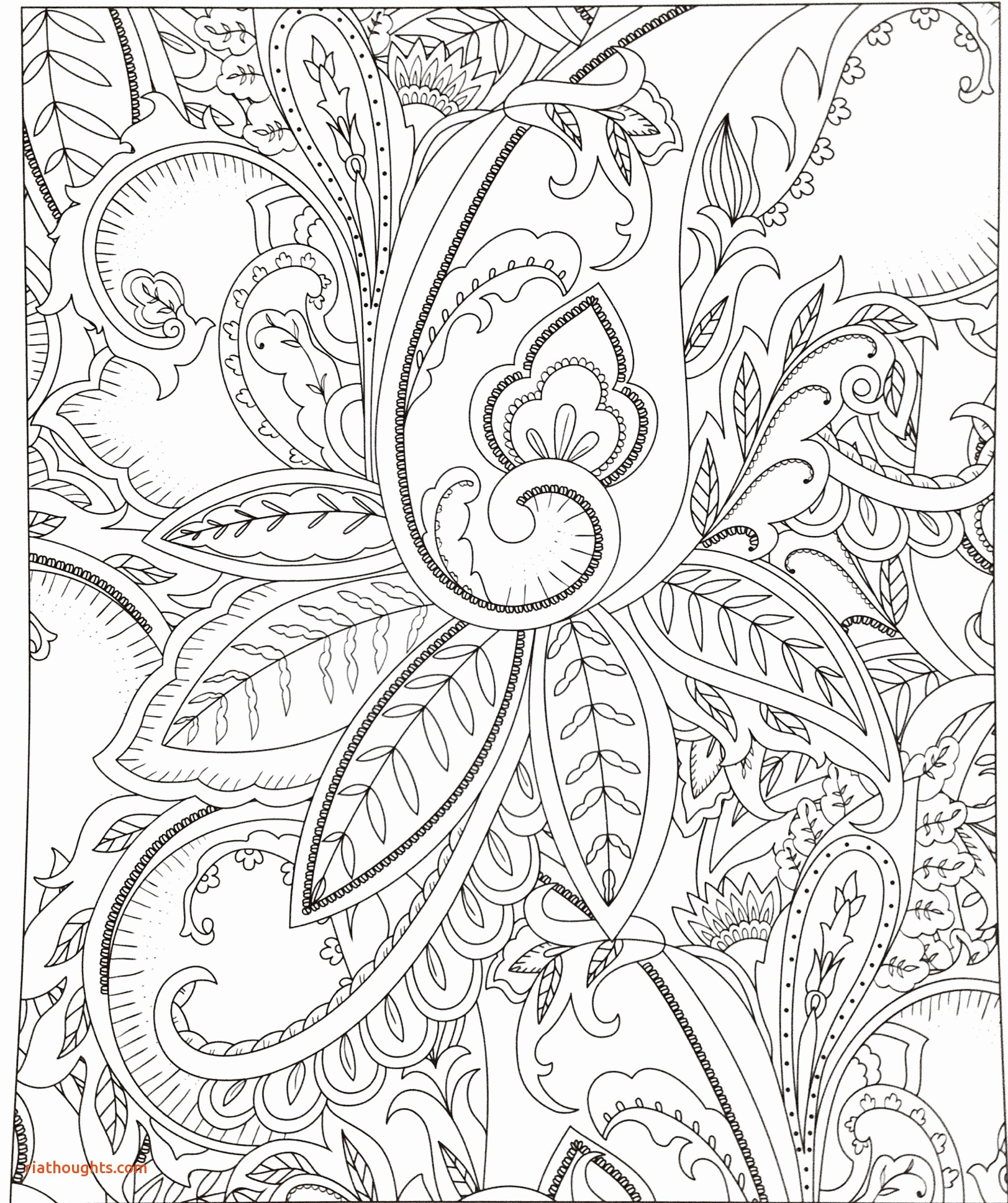 Unicorn Coloring Book Pages  Download 3a - Free For Children