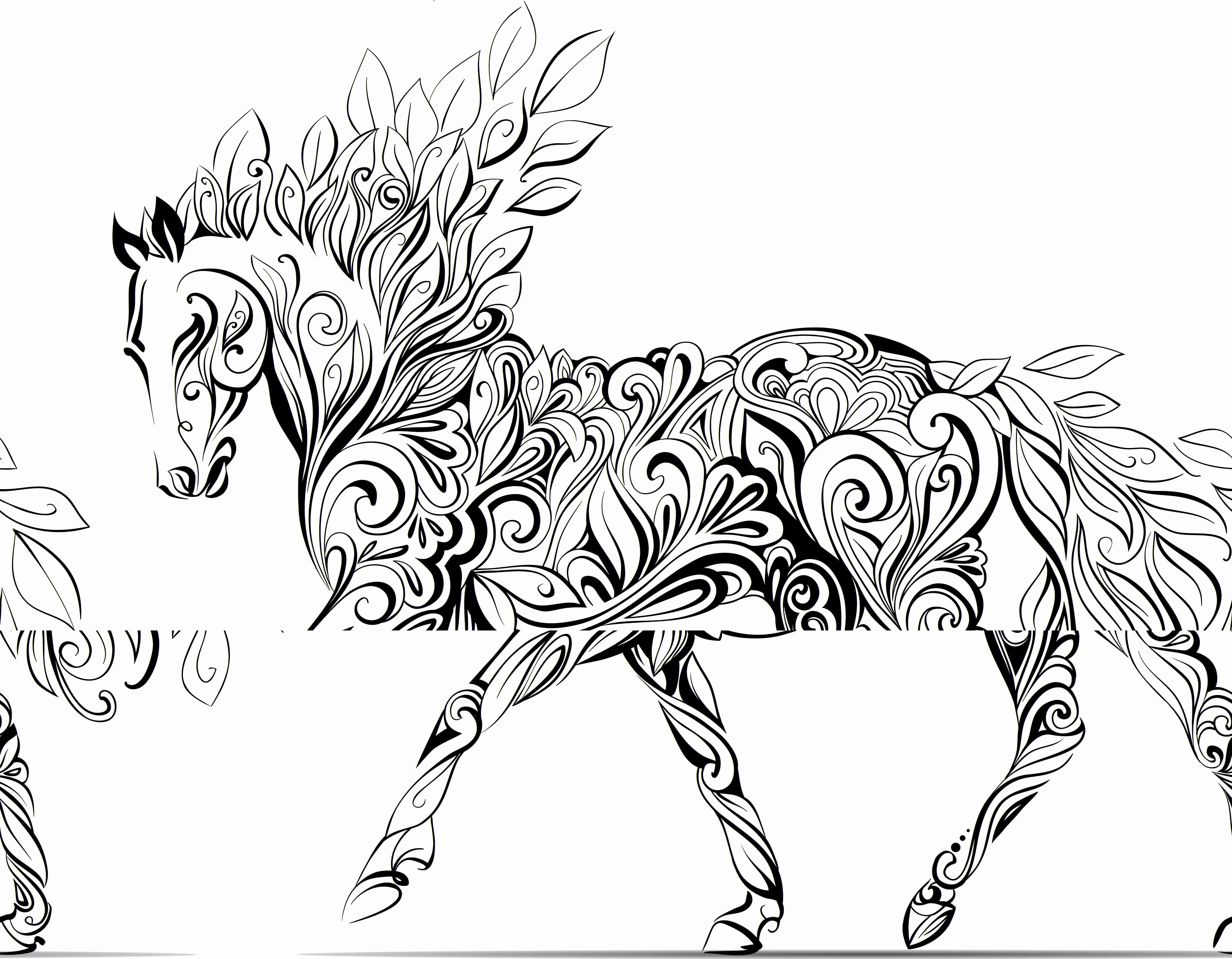 Unicorn Coloring Book Pages  Download 12d - Free For Children