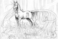 Unicorn Coloring Book Pages - Unicorn Coloring Pages Adult Coloring Pages