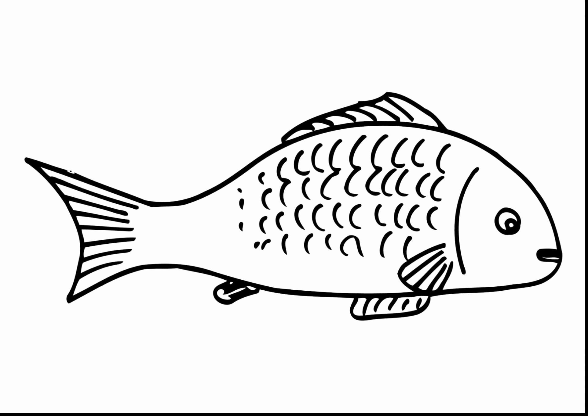 Walleye Coloring Pages  to Print 19d - Free For kids