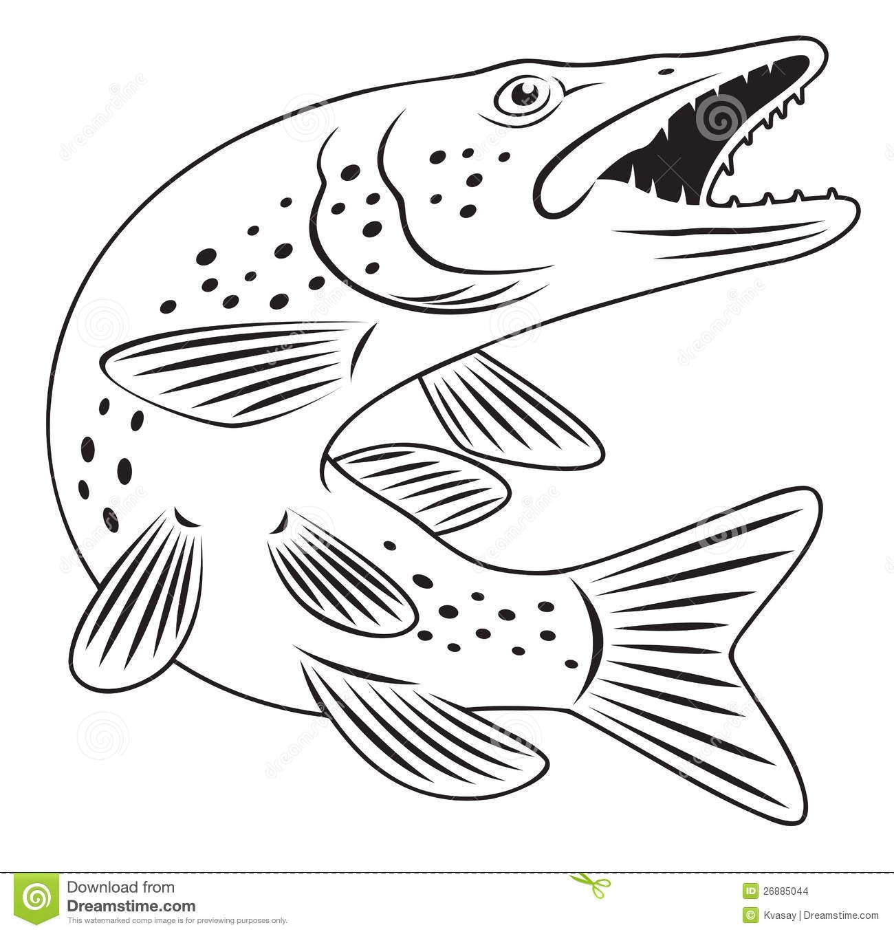Walleye Coloring Pages  to Print 14n - Free Download