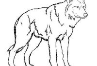Wolf Coloring Pages Realistic - Wolf Coloring Pages Realistic Coloring Pages