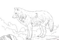 Wolf Coloring Pages Realistic - Wolf Howling Coloring Pages Coloring Pages Coloring Pages