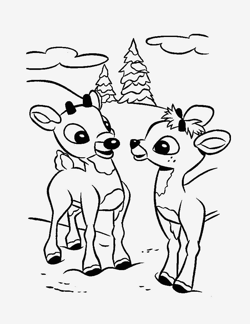 Woodland Creatures Coloring Pages  Collection 7j - Free Download